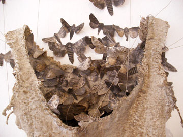 Detail of Moth Dress by Louise Richardson
