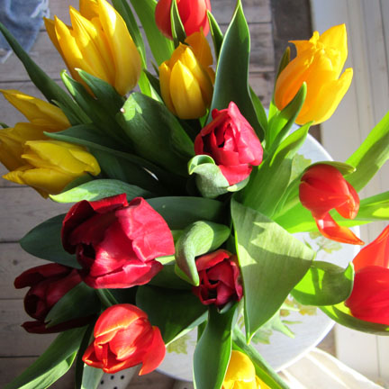 a bunch of red, yellow and orange tulips