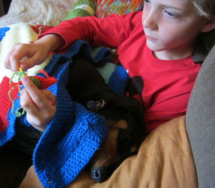 small dog helping small boy to knit